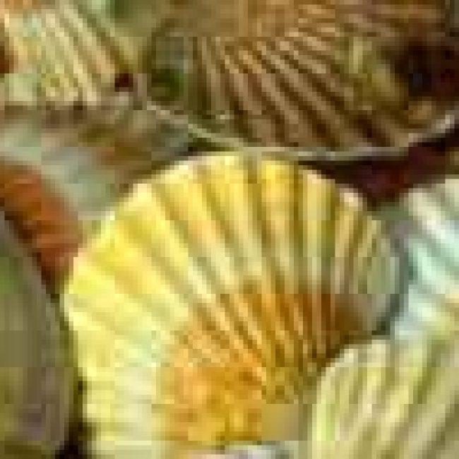 Manger de la coquille Saint-Jacques, c'est bon pour la planète !