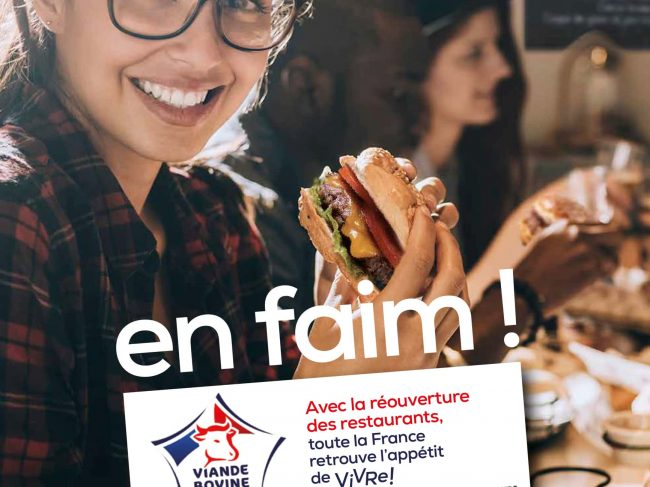 Les actualités de la filière viande bovine française