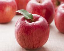 Petite histoire de la Pomme