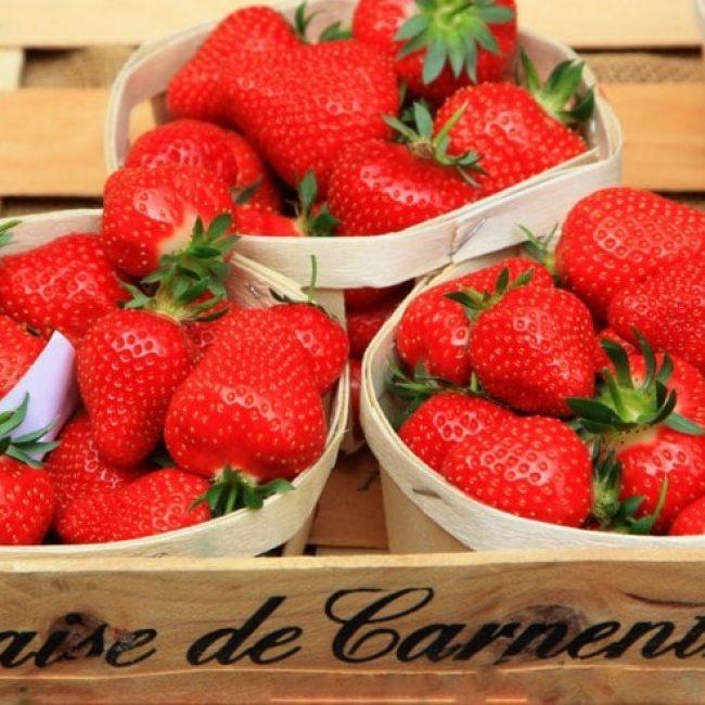 La fraise de Carpentras officiellement protégée