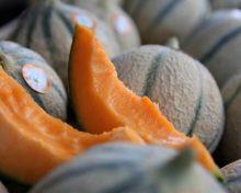 Histoires gourmandes – Le melon