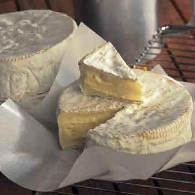 1791-2011, le Camembert de Normandie a 220 ans !